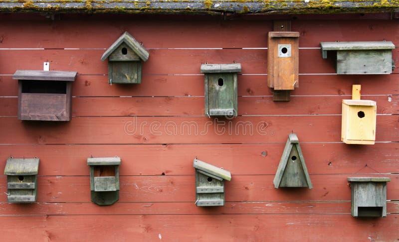 Bird boxes stock image