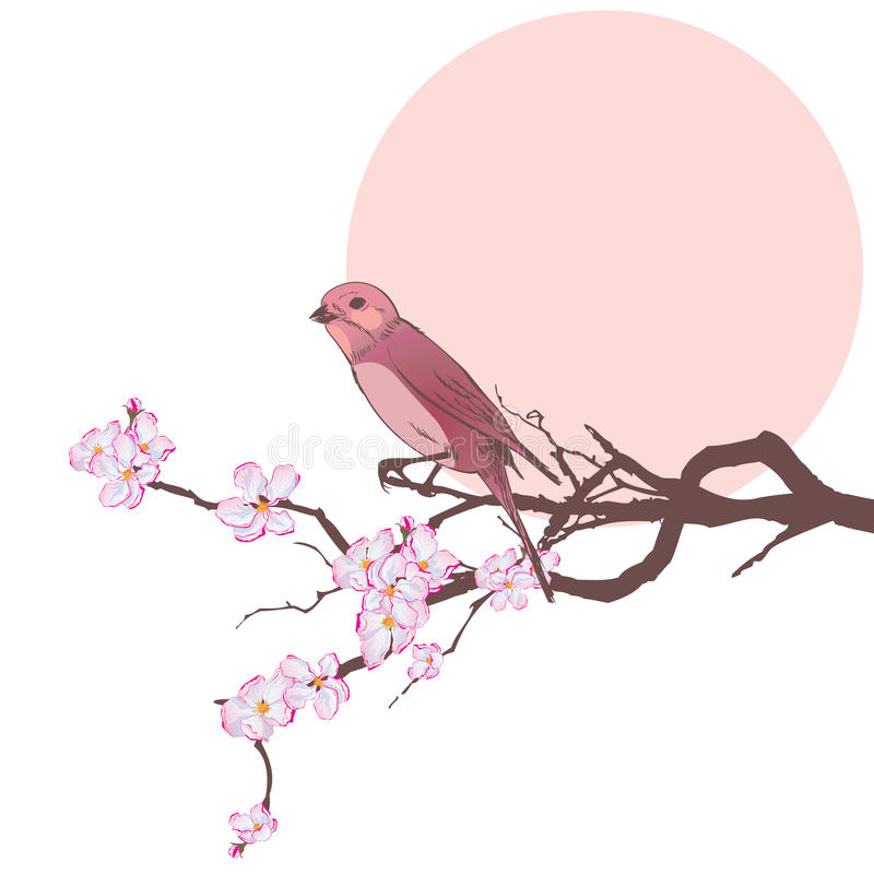 Bird and branch of cherry tree stock illustration
