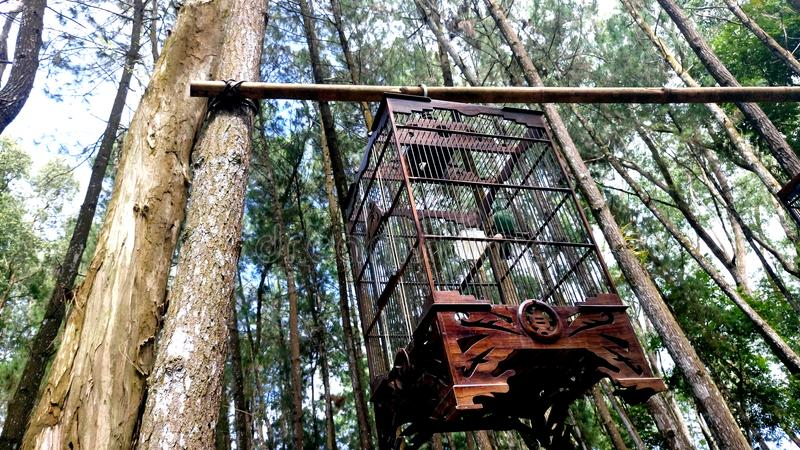 A bird cage made of wood stock images