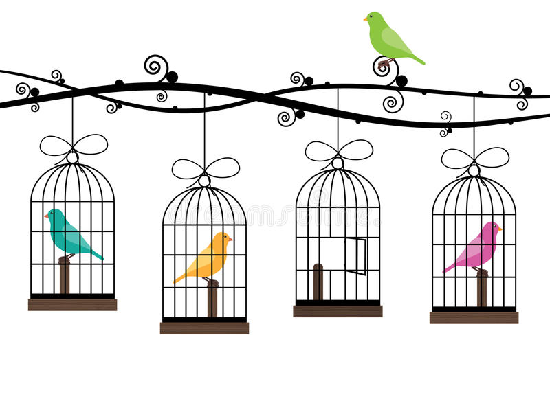 Bird cages. Hanging from decorative branches with birds