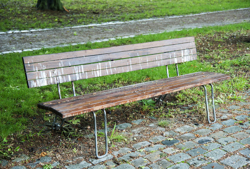 Bird droppings. And rain drops on a park bench royalty free stock photo