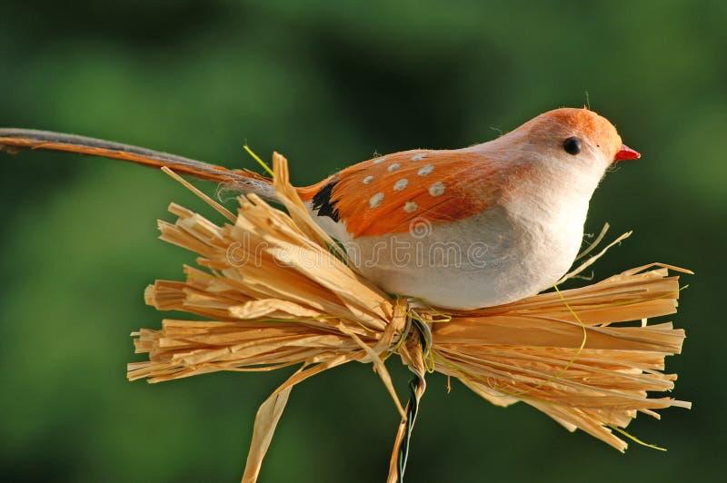 Bird dummy 2 royalty free stock photos