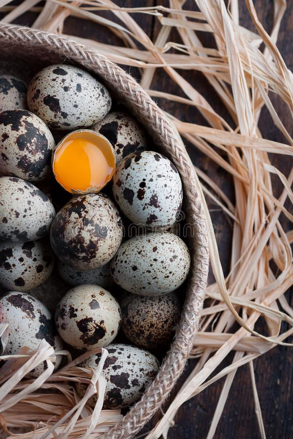 Bird eggs with one of them fracture and view the yolk royalty free stock photography