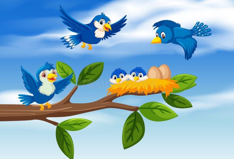 Bird family at tree branch stock illustration
