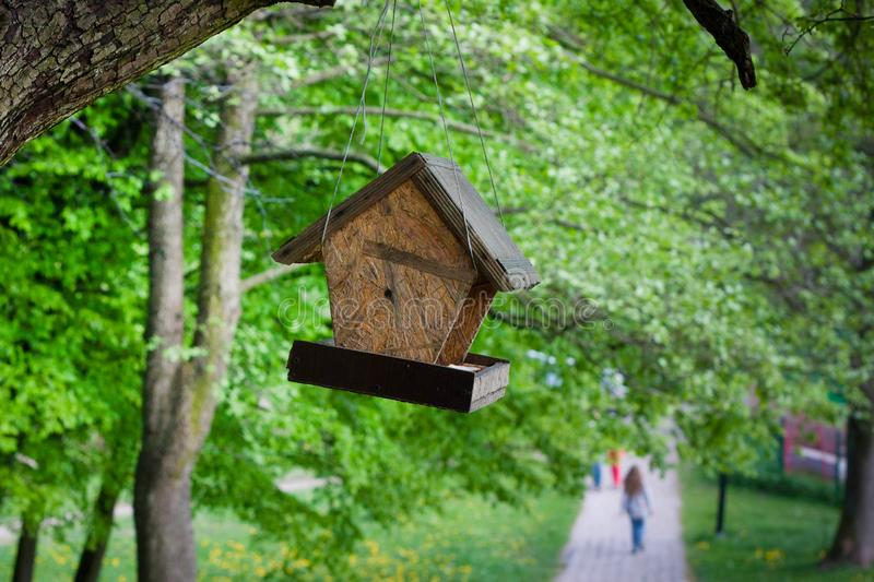 Bird feeder from chipboard hanging on a tree. In the park stock photos