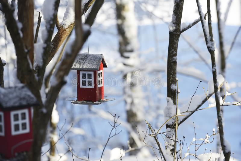 Bird feeder in the form of a house hanging on a branch in the winter garden. Bird feeder in the form of a house hanging on a branch in winter royalty free stock photo