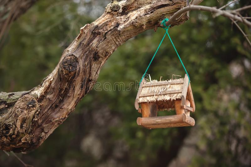 A bird feeder in the form of a small house hanging on a tree bra royalty free stock photo