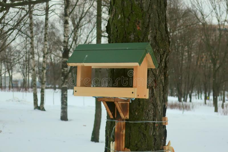 Bird feeder with a green roof, screwed to a tree with wire stock image
