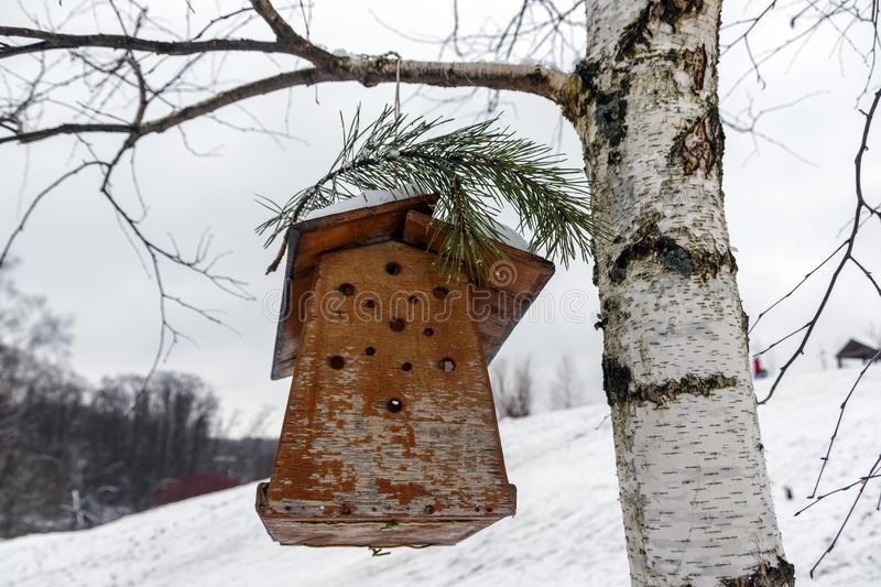 A bird feeder hanging on a birch tree. Against a snow-covered glade stock photo