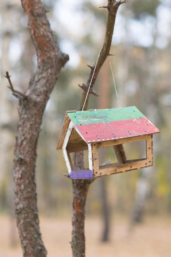 Bird feeder hanging on the tree. Beautiful background royalty free stock photography