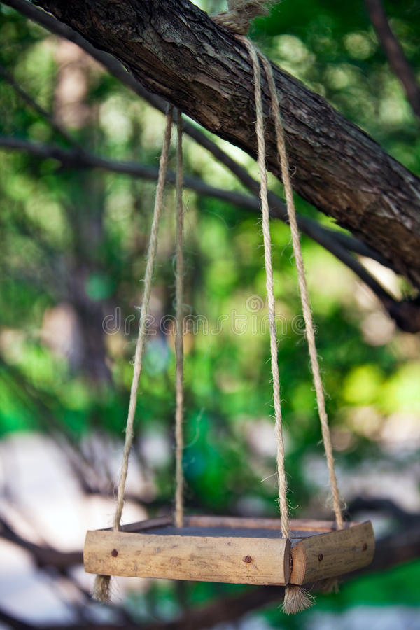 Bird feeder hanging on the tree branch. Wooden bird feeder hanging on the tree branch royalty free stock photo