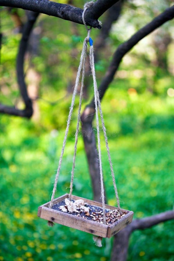 Bird feeder hanging on the tree branch. Wooden bird feeder hanging on the tree branch stock image
