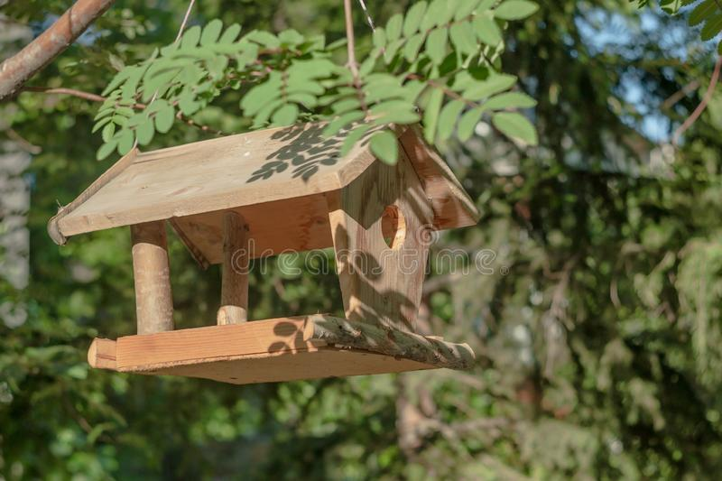 Bird feeder hanging on a tree branch. Bird feeder made of wood and plywood hanging on a branch on a summer day among the foliage stock images
