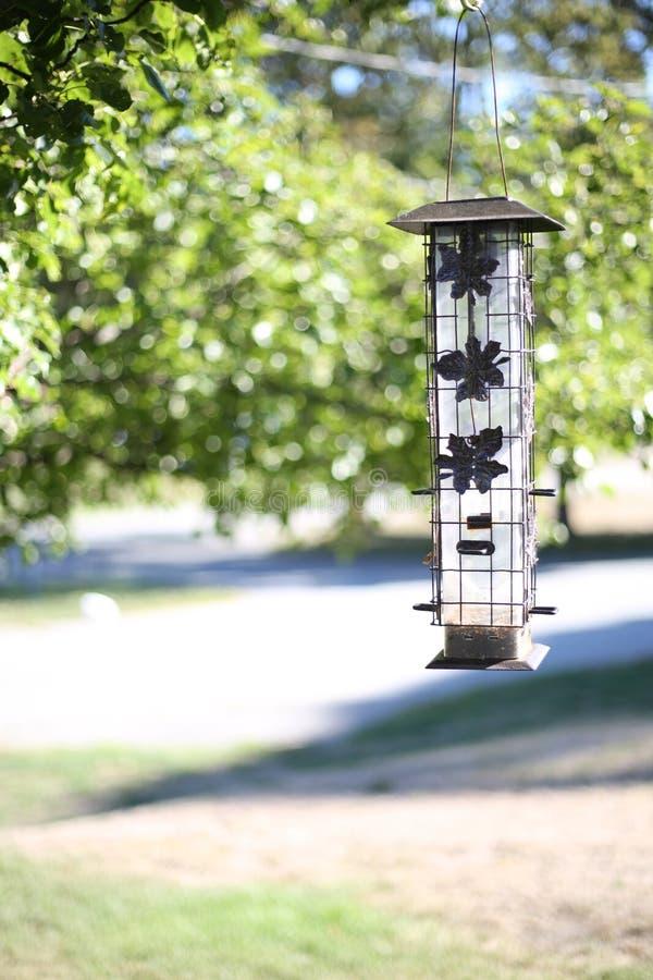 Bird Feeder royalty free stock photos