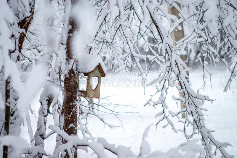 Bird feeder hanging on a tree in a snowy pine forest. The trough with an entrance in the shape of a heart royalty free stock photos
