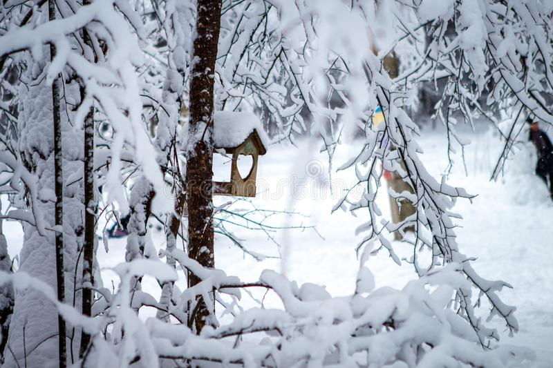 Bird feeder hanging on a tree in a snowy pine forest. The trough with an entrance in the shape of a heart stock image