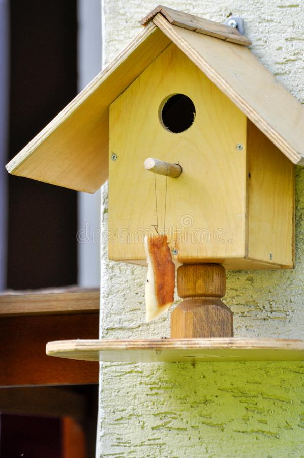 Bird feeder hanging from wall with piece of lard. In Poland royalty free stock photo