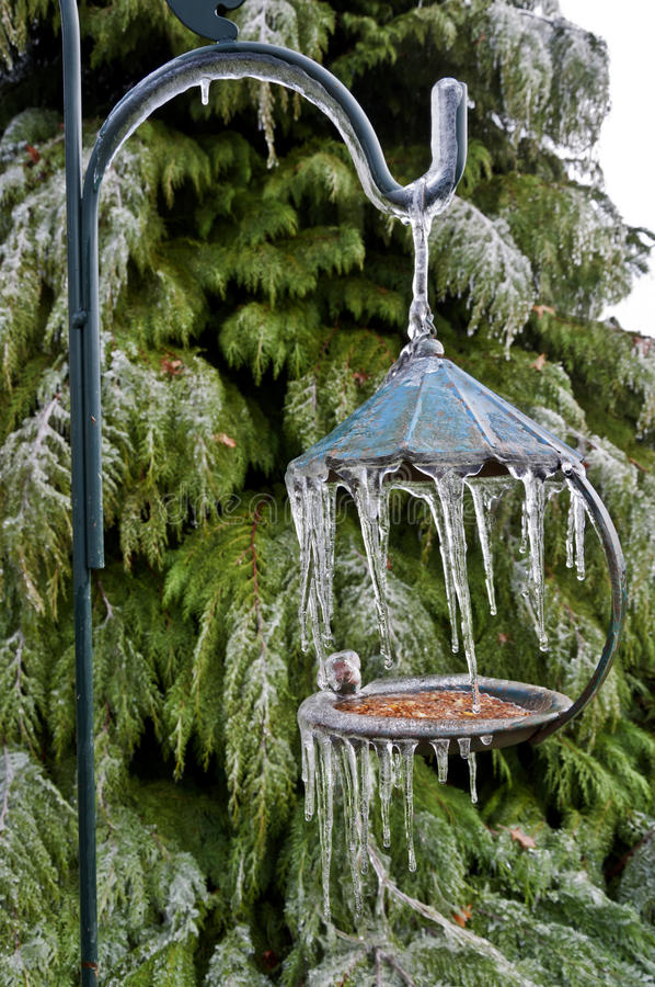 Bird feeder with icicles hanging from post. Metal bird feeder with icicles hanging from post in front of cedar tree stock images