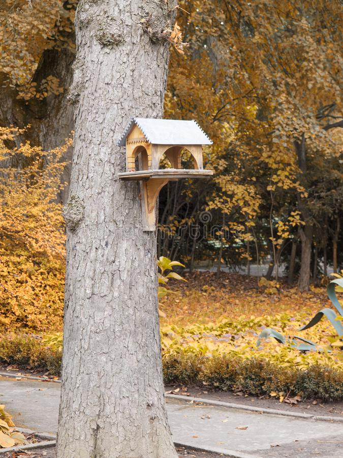 Bird feeder on a tree in autumn park royalty free stock photography