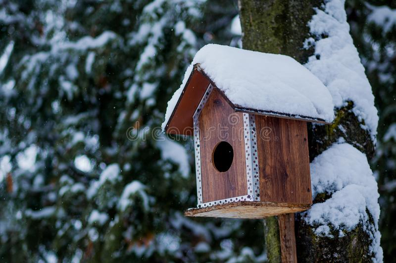 Bird feeder in winter park. Bird house hanging outdoors in winter on tree covered with snow royalty free stock photography