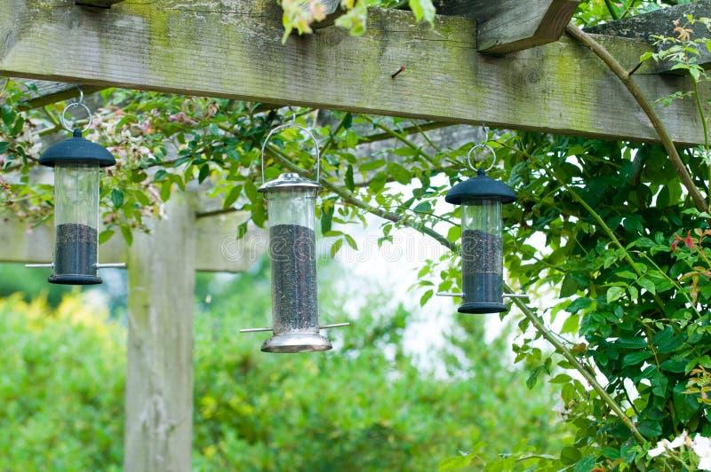 Bird feeders. Three bird feeders hanging on a trellace stock photography