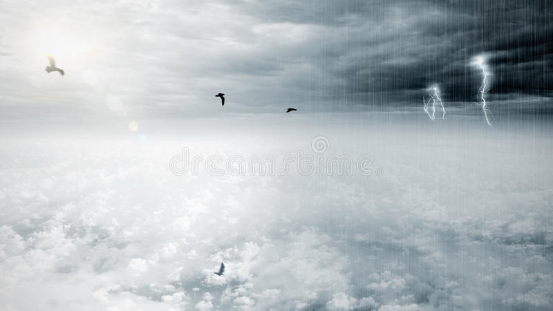 Bird flying on fantasy opposite weather sky, beautiful sun and ominous stormy sky clouds. Infinity conception for composite royalty free stock images