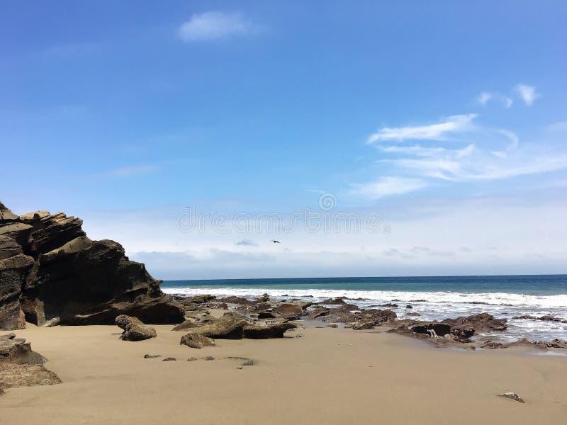 Bird Flying over Rock Formations at La Tinosa Ecuador royalty free stock images