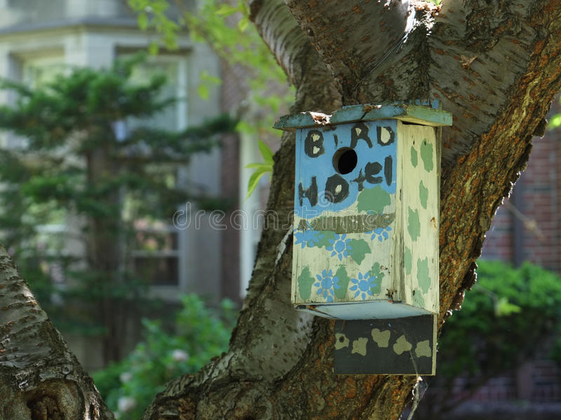 Download The Bird Hotel stock photo. Image of bird, garden, park - 31299414
