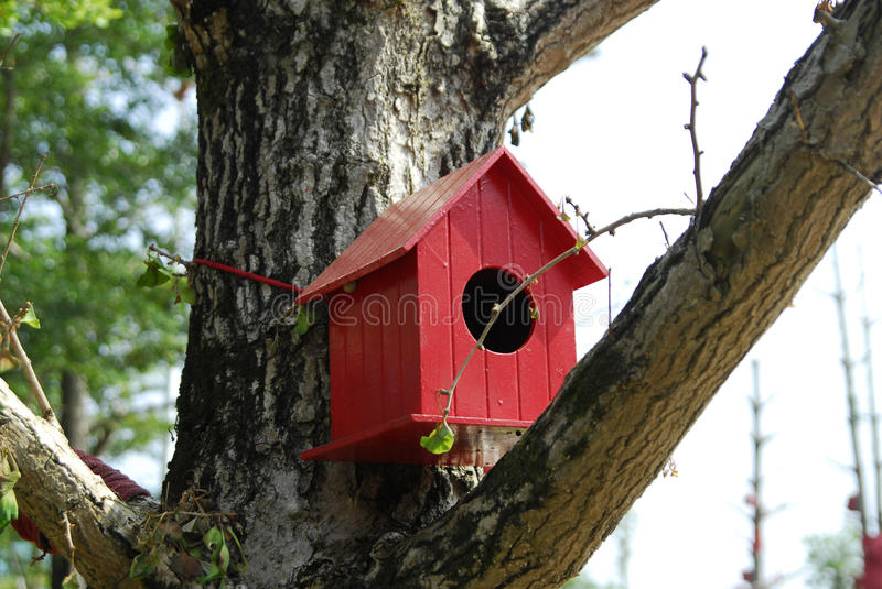 Bird House. A red wooden bird house built on tree stock images