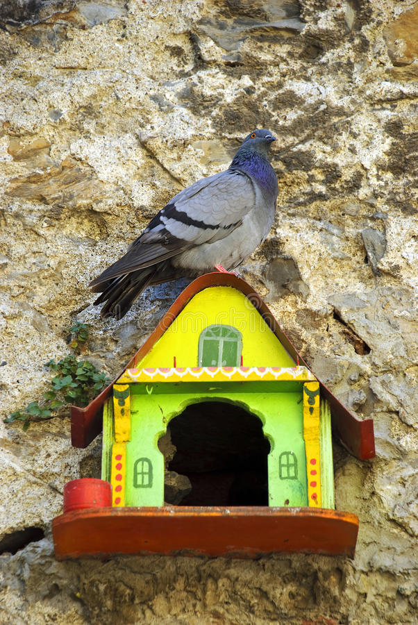 Bird House Royalty Free Stock Photos