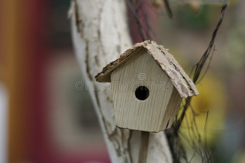Bird house. Mini bird house on tree royalty free stock photos