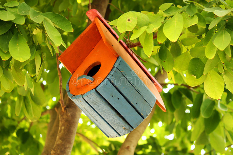 Bird house. Hanging on the tree royalty free stock photography