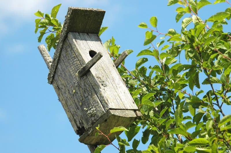 Bird House Free Stock Photo