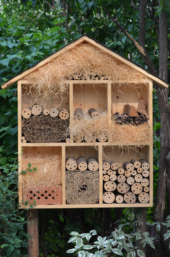 Download Bird House Royalty Free Stock Photography - Image: 25596057