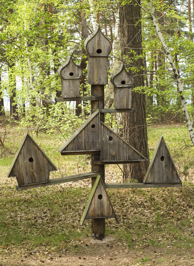 Bird house. In a forest royalty free stock images