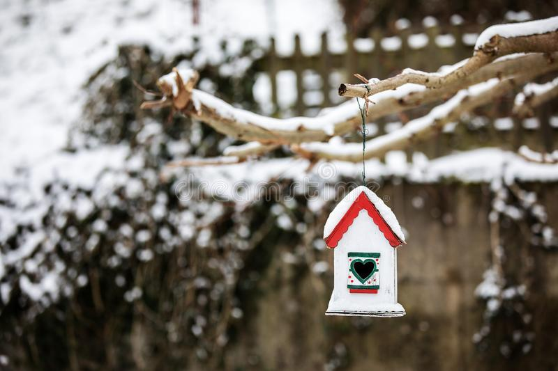 Bird house with seeds to feed birds in winter time stock photo