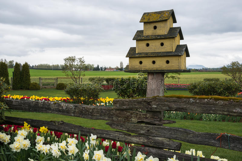 Bird House Spring Flower Garden on Farm. A bird house stands above a rail fence in a spring garden with daffodils and tulips on a farm. Copy space royalty free stock photography