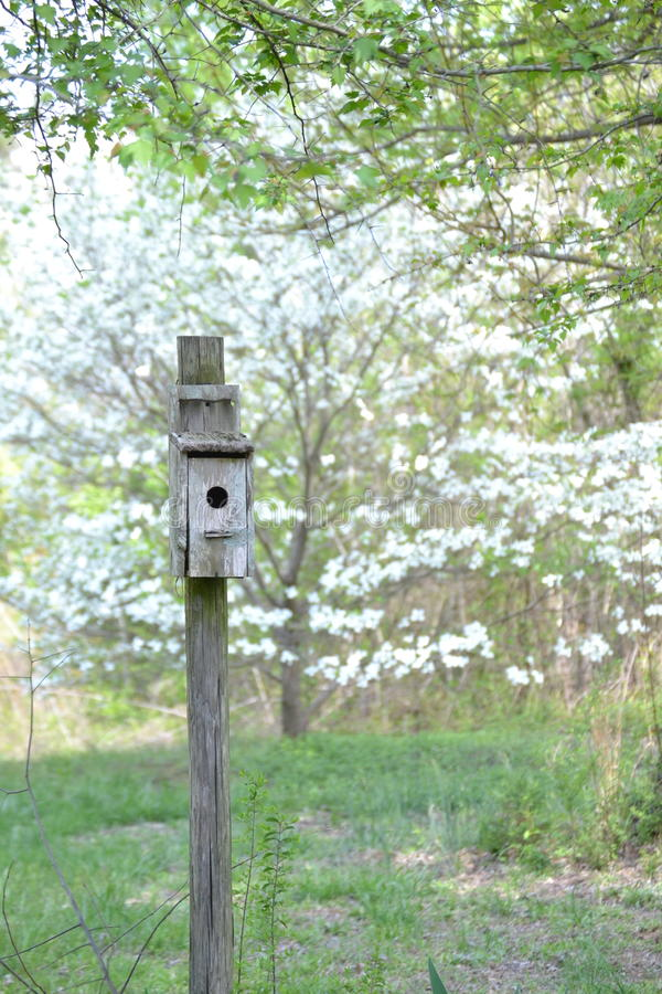 Bird house stock image