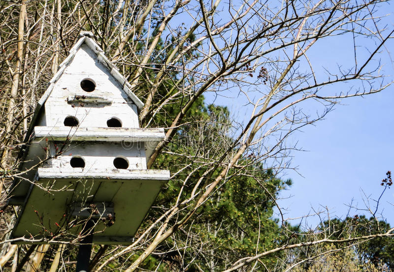 Bird house with woods stock photo