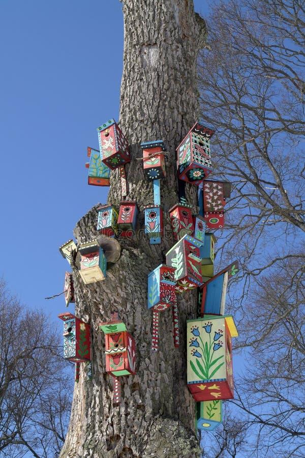 Bird Houses royalty free stock photos