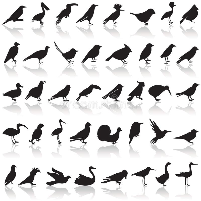 Bird icon set stock illustration