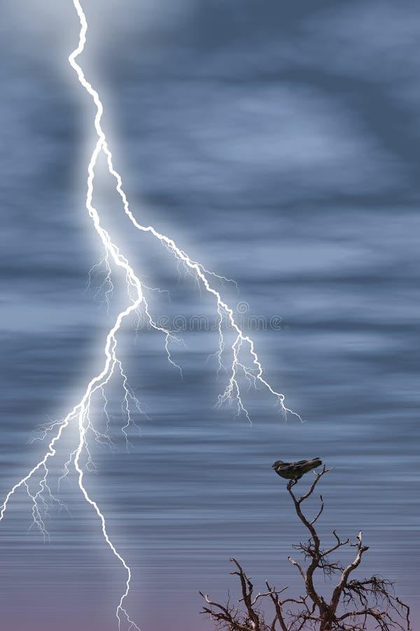 bird lightning tree