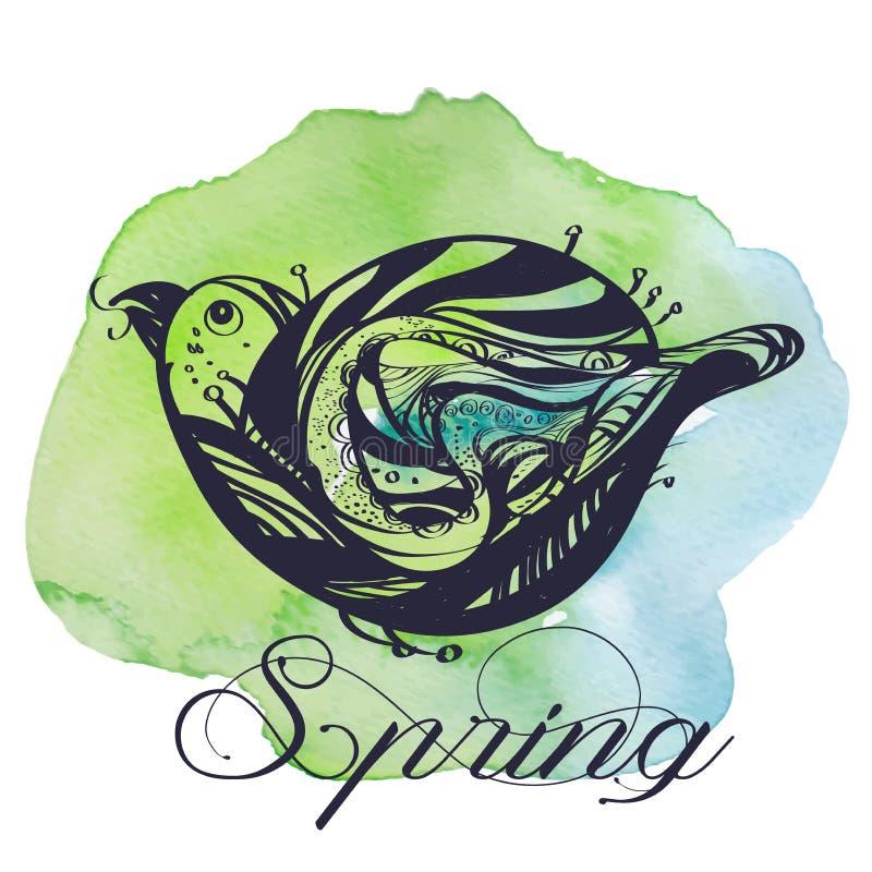 Bird, line drawings, ink drawing, hand drawn illustration, stock illustration