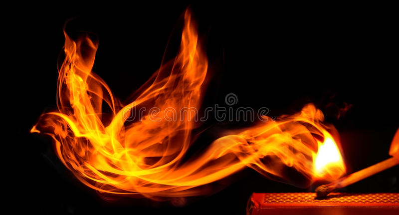Bird made of fire. Comes from a burning matchstick stock photos