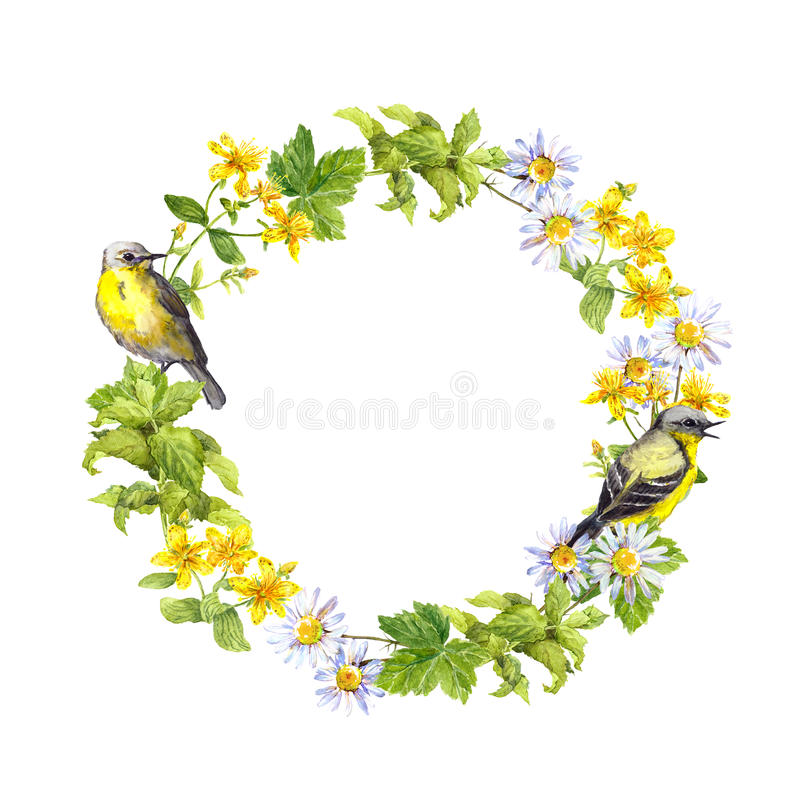Free Bird, Meadow Flowers. Floral Wreath. Watercolor Circle Border Royalty Free Stock Images - 80957829