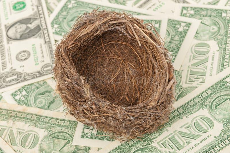 Download Bird nest stock image. Image of brown, savings, dollar - 26703271