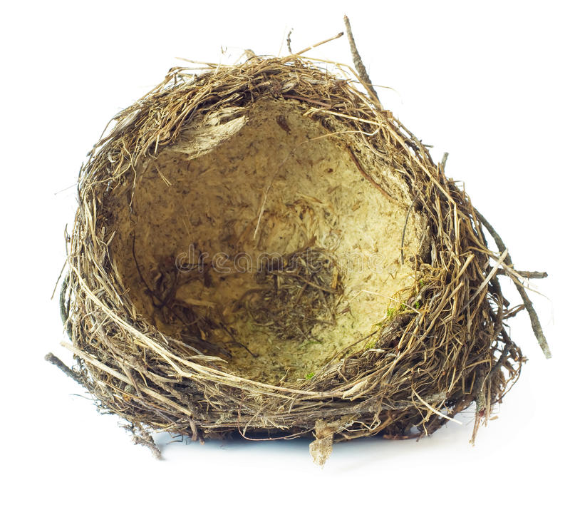 Download Bird nest stock image. Image of nest, round, house, grass - 28865351