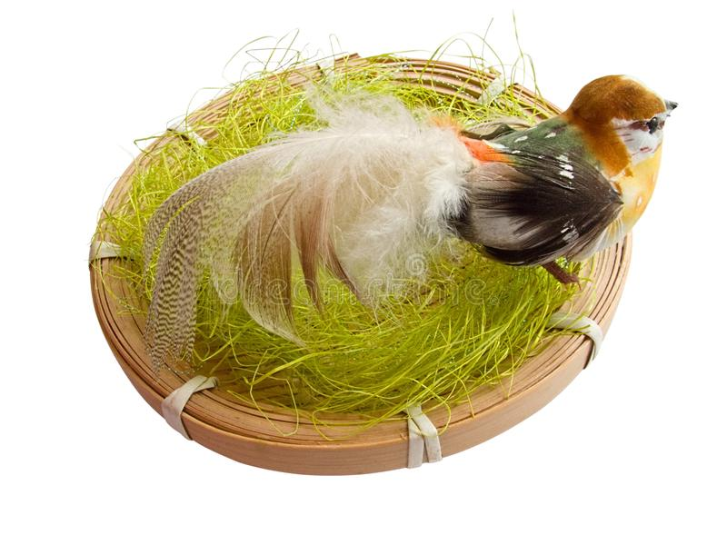 Download A bird in the nest stock image. Image of white, feathers - 8350497