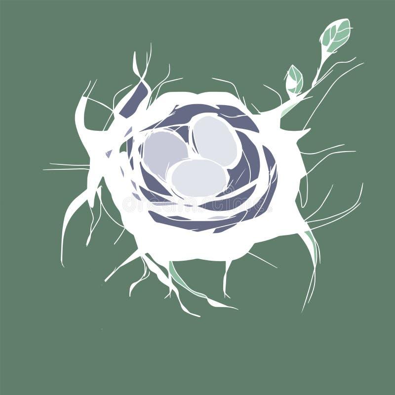 Bird nest with eggs on green background vector illustration
