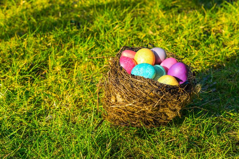 Bird nest filled with colorful painted eggs, Easter background royalty free stock photography